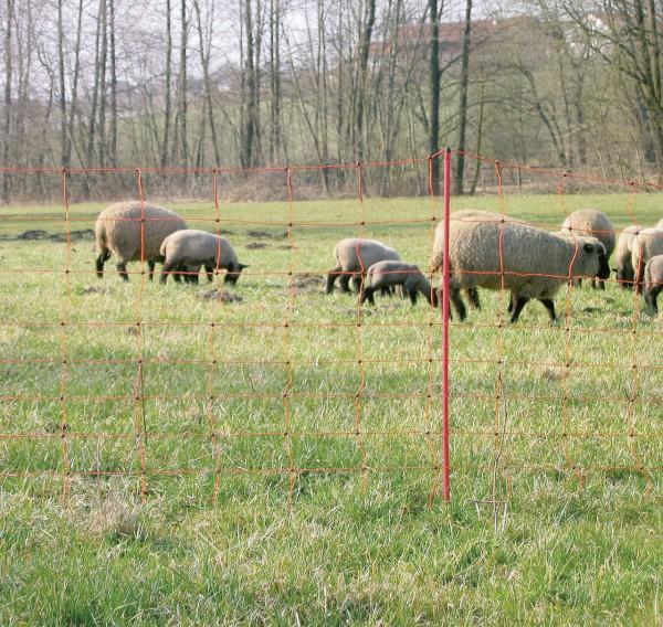 AKO OVINET Schafnetz, 90cm hoch Einzelspitze