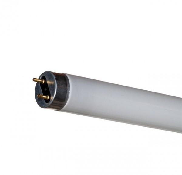 Blaulichtröhre 15 Watt für Halley 2138