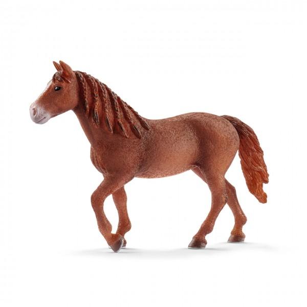 Schleich Morgan Horse Stute